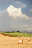 Summer landscape in Tuscany - 115831669