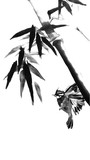 Card with bamboo and bird on white background in sumi-e style.