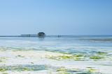 Low tide beach in Zanzibar, Tanzania
