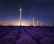 Lavender night / Night view of wind farm near а blooming lavender field in Northeastern Bulgaria