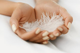 Closeup Of Beautiful Woman Hands Holding White Feather - 115885294