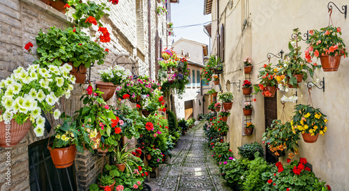 Panel Szklany Beautiful street decoration with flowers in medieval town Spello