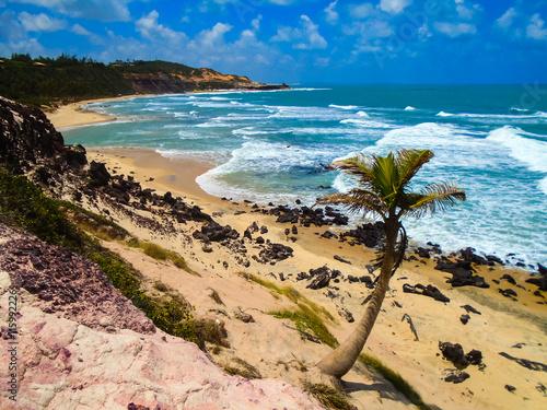 fototapeta na ścianę Pipa Beach in Brazil