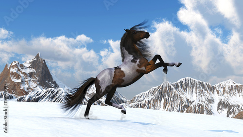 Horse against mountains