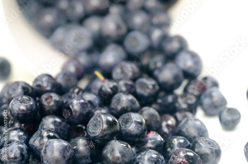 blueberries © aga7ta