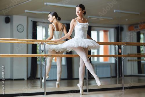 fototapeta na ścianę Graceful ballerina