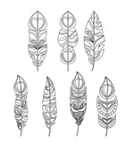 feather pattern set isolated icon design, vector illustration  graphic