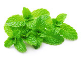 Green mint leaves isolated - 116189698