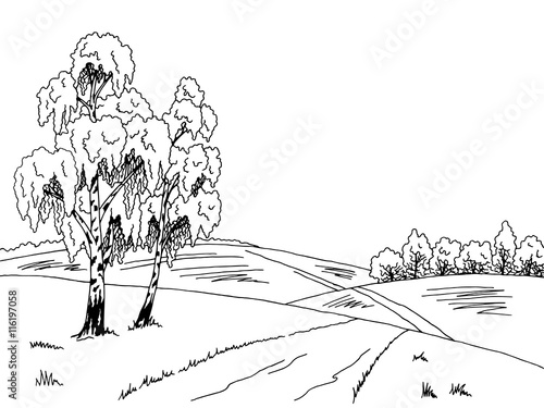 Naklejka Birch tree road graphic art black white landscape illustration vector