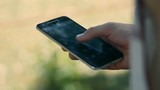Smart Phone Using on Garden Background