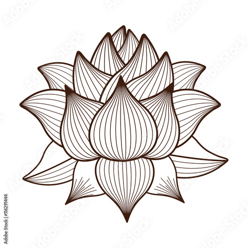Naklejka lotus flower drawing isolated icon design, vector illustration graphic