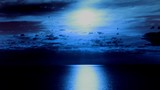 4k.Moon and clouds  with moon road reflection on sea surface . Timelapse without birds.