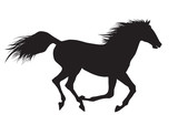Vector illustration of running black horse - 116353499