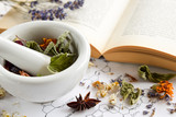 Fototapety natural apothecary with herbs and book