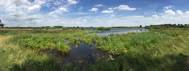 Moorgebiet im Panorama