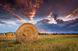 Agricultural field with hay bales at sunset.