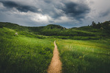 Landscape of a trail leading into field with hills before a storm. - 116437248