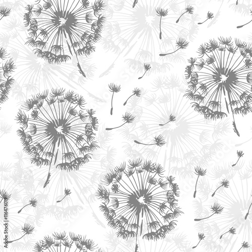 Panel Szklany Seamless dandelion pattern, vector seamless background