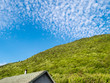 Scattered clouds in blue blue sky over hill covered in green trees with roof of a shed in the foreground