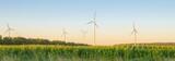Windpark und Maisfeld in Österreich - 116502268