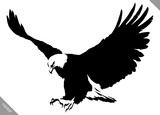 Fototapety black and white paint draw eagle bird vector illustration