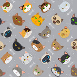 Fur cute different color cats pattern vector background