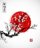 Fototapety Sakura in blossom and red sun, symbol of Japan on white background. Contains hieroglyphs - zen, freedom, nature, happiness. Traditional Japanese ink painting sumi-e.