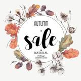 Autumn vector vintage cotton flower, sale card - 116596220