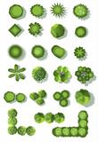 set of treetop symbols, for architectural or landscape design.vector - 116622240