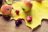 close up of autumn leaves, fruits and berries