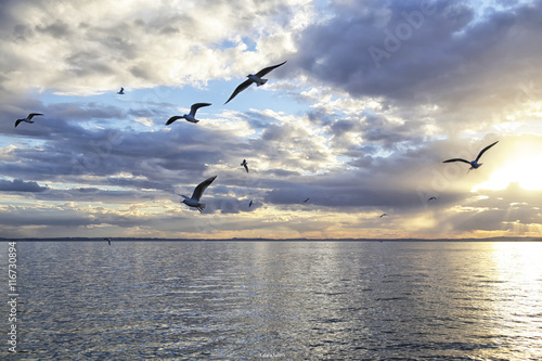 Landscape of Lake Garda,Italy, at sunset under a blue cloudy sky(panorama del Lago di Garda, Italia, al tramonto sotto un cielo nuvoloso e blu)