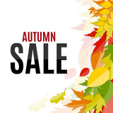 Shiny Autumn Leaves Sale Background Vector Illustration