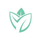 Leaf. Mint  - 116737451