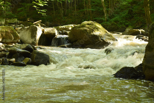Beautiful montain river flow