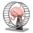 3d Gehirn läuft gegen das Hamsterrad. Ein Wettlauf gegen den Verstand.