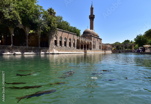 Plakat Balikligol in Sanliurfa is also known as the pool of sacred fish or the pool of