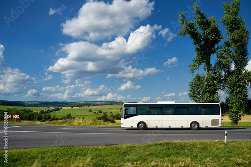 Poster The white bus driving on the asphalt road past the two tall cottonwoods in the countryside under a blue sky with white dramatic clouds