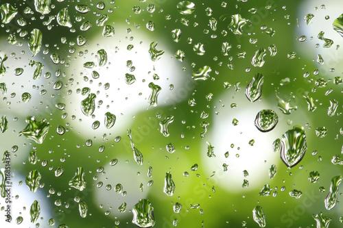 rain drop on blurry green background