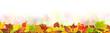 Herbst 121