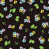 Seamless pattern with small blue flowers, forget-me-not - 116892839