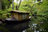 Nezu museum garden in summer, Tokyo, Japan