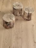 Tavola di legno e ciocco di legno