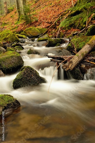 Foto op Aluminium Scandinavië Spring flowing mountain stream waterfall in Slovakia