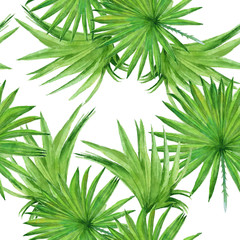 Background palm tree leaves. Seamless pattern. Watercolor illust