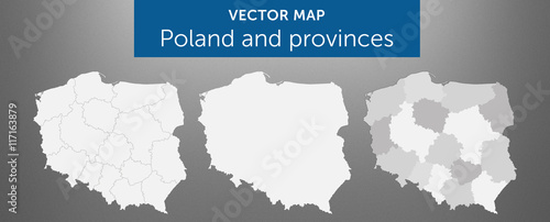 Fototapeta Vector map of country Poland and voivodeships vol.1