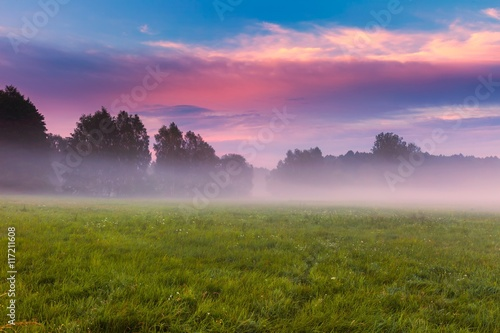 Deurstickers Lichtroze Wild foggy meadow landscape