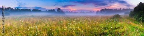 Wild foggy meadow landscape Poster