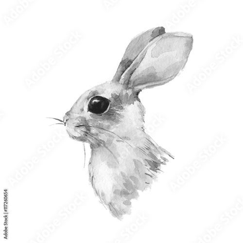 Cute rabbit. Watercolor illustration. Black and white bunny - 117260654