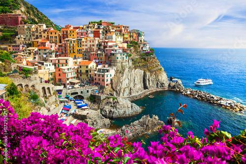 Colors of Italy series -Manarola village , Cinque terre Poster