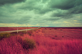 Vintage rural dirt road in the field with cloudy sky